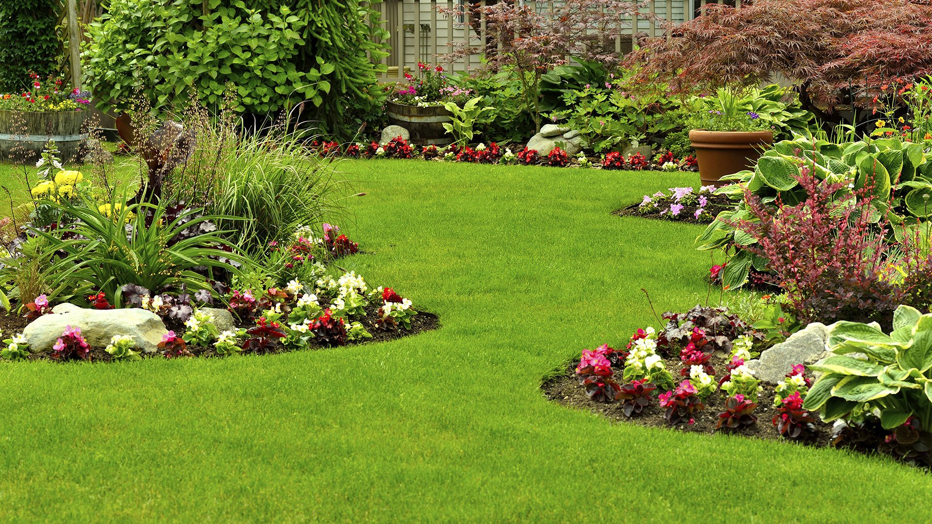 Delightful Lawns In Order | Quality Is Our Top Priority.